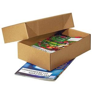 20 Nestler Kartons mit abnehmbarem Deckel 33,8 x 23,8 x 16,7 cm