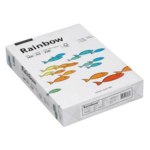Rainbow Kopierpapier COLOURED PAPER DIN A4 160 g/qm 250 Blatt
