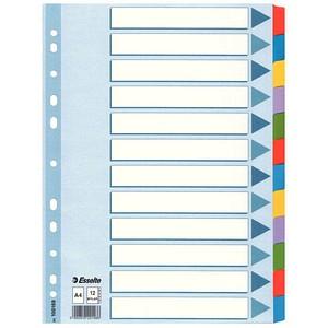 Esselte Ordnerregister   DIN A4 Vollformat blanko weiß 12-teilig